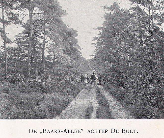 Overijssel plaatsbeschrijvingen 1880 1940 gids voor steenwijk en omstreken grotere wandelingen - Allee steen ...