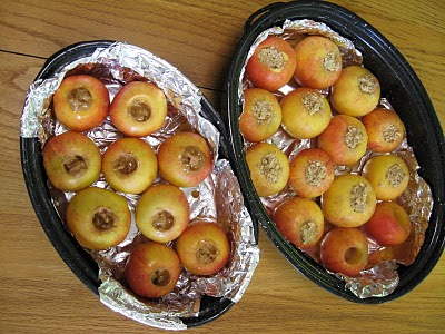 NAMC Montessori practical life activity solar cooked apples earth day