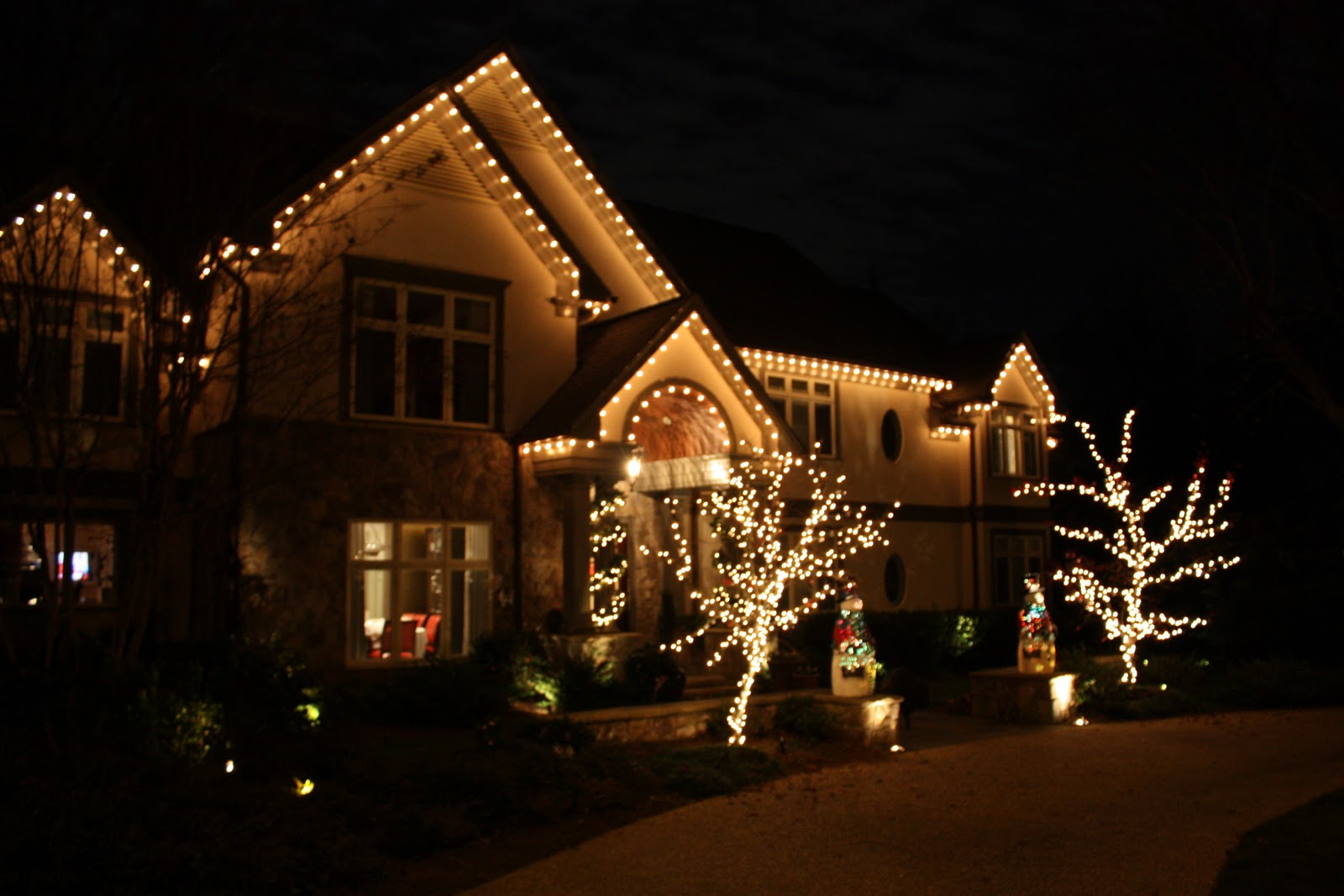 Viva Cindy: The Christmas Light Pros of Atlanta: At Your Service!