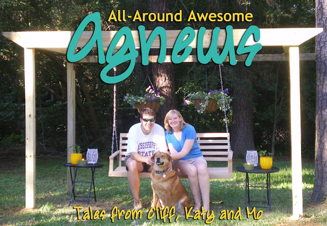 All-Around Awesome Agnews