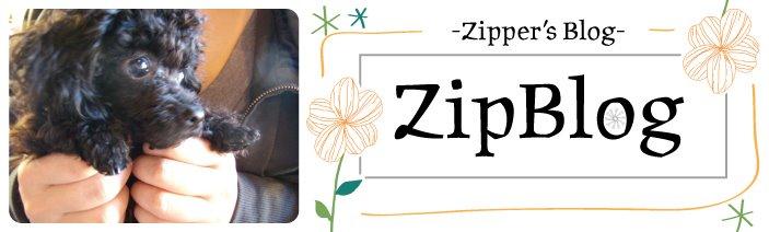 ZipBlog