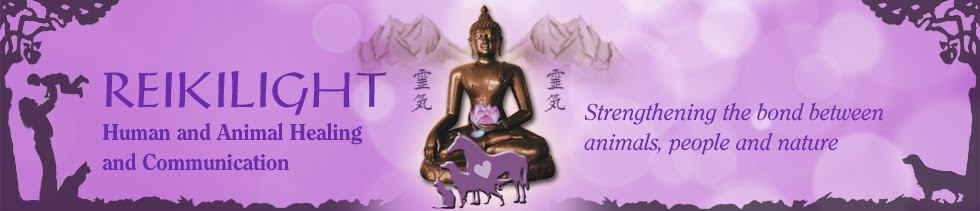 REIKILIGHT: Human and Animal Healing and Communication
