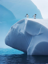 Mediterráneo en la Antártida