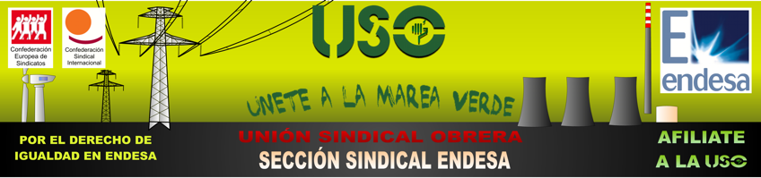 Union Sindical Obrera Endesa