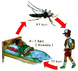 Bersihkan Tempat Pembiakan Nyamuk Aedes