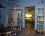 Escape from Sea Museum
