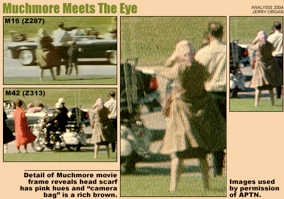 an analysis of the gathered evidences in the kennedy assassination Jfk analysis of a shooting, is an expert, detailed and comprehensive analysis of the assassination of president kennedy  the book denotes, through conclusive interpretation of the evidence gathered, logical reasoning, and concrete.