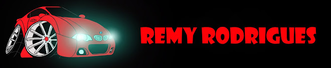 The Art of Remy