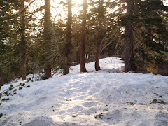 snow on trail 5-12-08