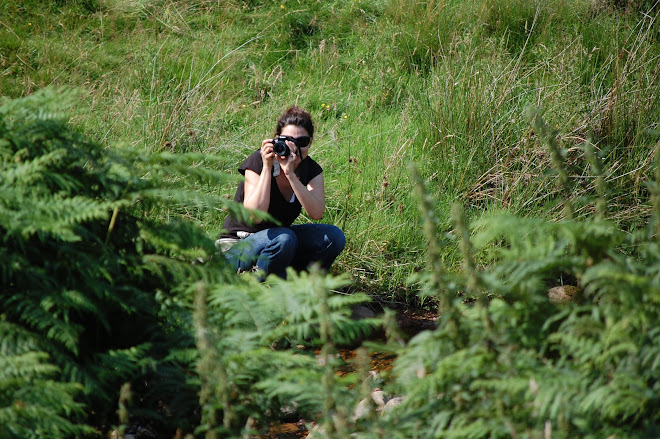 Jill Photographing in the Bracken