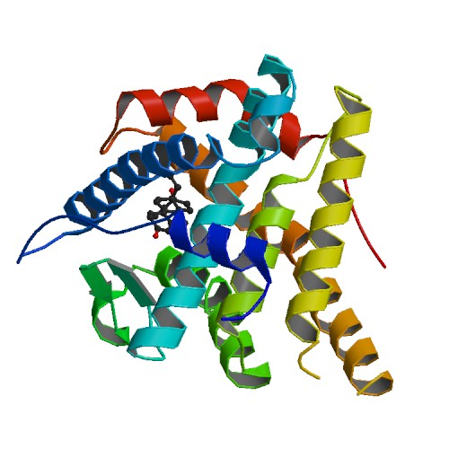 There are several structures known of PR complexed with ligands,