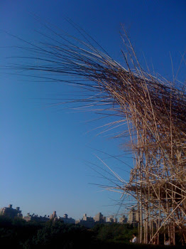 Big Bambu!