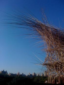 Big Bambu!