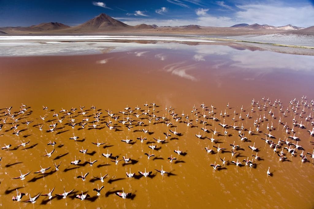 Atractivos de Potosí, Bolivia