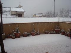 Nevando en Campo