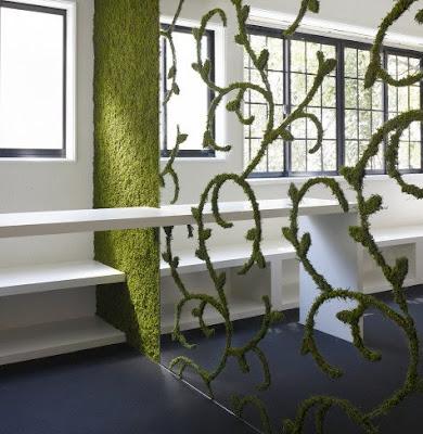 decoracion, paredes, musgo