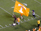 Big Orange Fans
