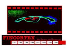 FINCORTEX 2008