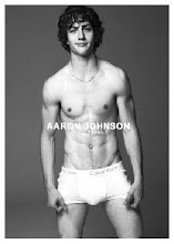 aaron johnson♥