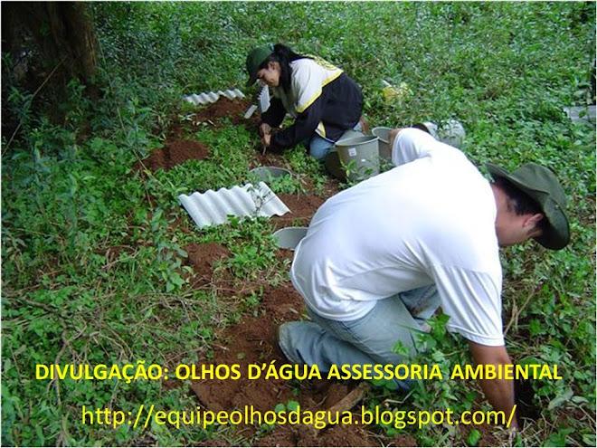INSTALAÇÃO DE ARMADILHAS PITFALL