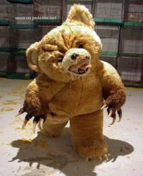 http://2.bp.blogspot.com/_Gwg_CUzB4rQ/TC0ozjxcuZI/AAAAAAAAAfQ/caXOM1jclMM/s1600/teddy+bear.jpg