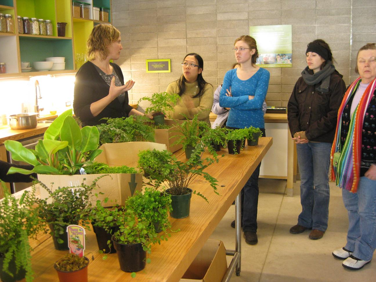 pots and jars: Indoor Plant Projects Workshop