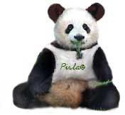 Pandapirla