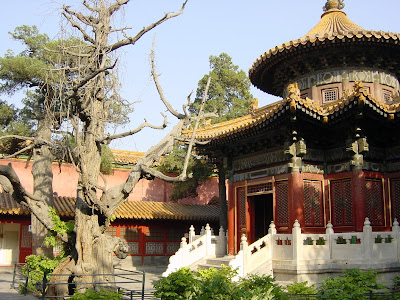Forbidden City The Beautiful Chinese Art OK Betong