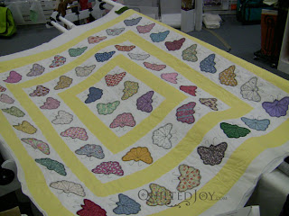 Lorena Butterfly WS1