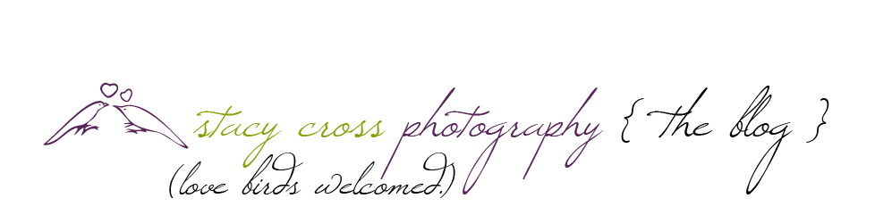 Stacy Cross Photography Blog