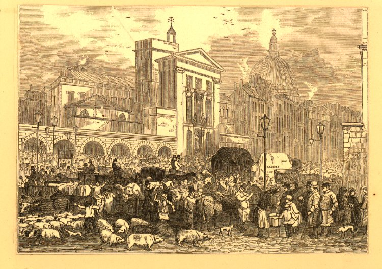 View of the cattle market on the south side of Smithfield, London