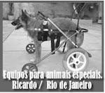 RB.Service, Equipos para cães.