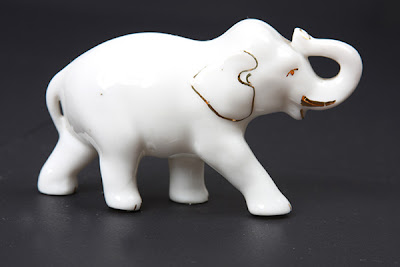 http://2.bp.blogspot.com/_H-AmDI_9xrA/Sm25TjhoxpI/AAAAAAAAHFQ/6N_-N1TORLk/s400/1+elefante-branco.jpg