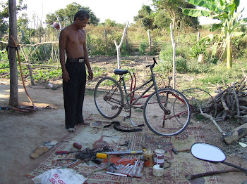 Nil Noy's Bicycle Business