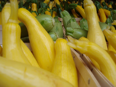 Fresh squash, fresh zucchini