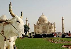 Momumentos en India