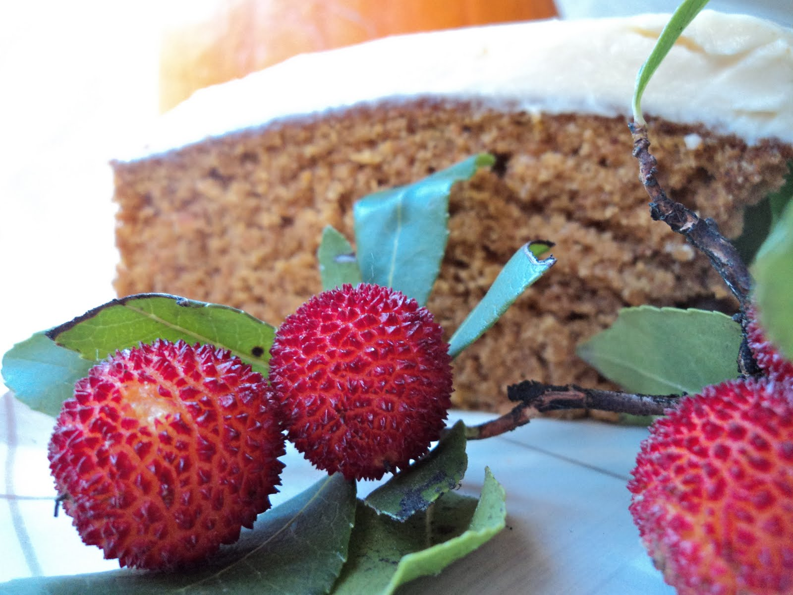 Mariola´s Cooking Therapy: Pumpkin Spice Cake with Honey Frosting