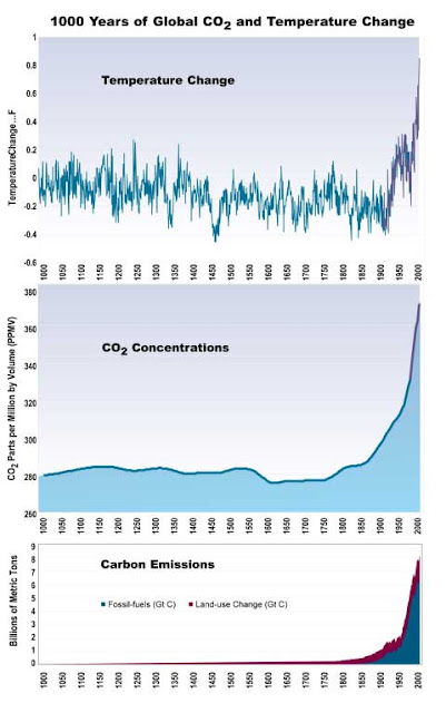 100 years of temperature and CO2 change