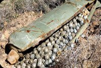 US uses cluster bombs in sadr city