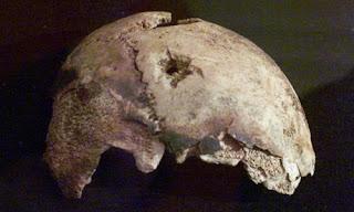 tests on skull fragment cast doubt on hitler suicide story