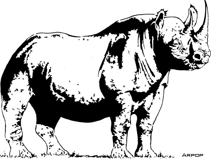 Texas Scroll Saw Patterns: Black Rhino - Wildlife Scroll ...: http://scrollsawtexas.blogspot.com/2007/12/black-rhino-wildlife-scroll-saw-pattern.html