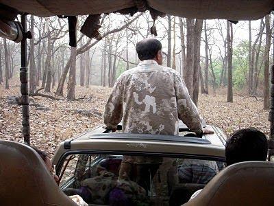 Safari at Kabini