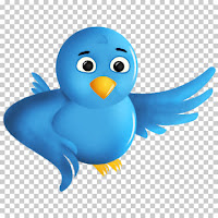 picture of the blue Twitter bird logo