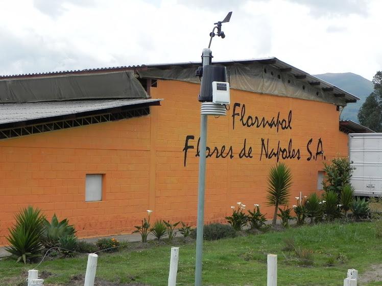 Estación Meteorológica en Flores de Nápoles
