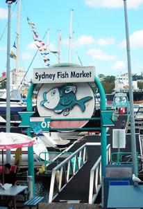 docking at the Fish Market