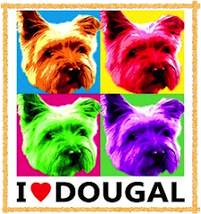 Frugal Dougal