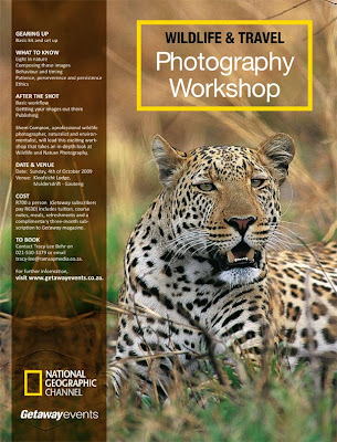 photo workshops, shem compion, wildlife photography