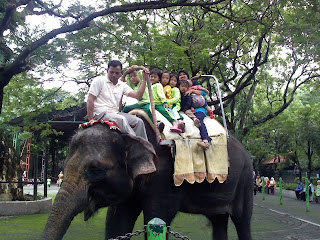 A Family Day out at the Surabaya Zoo