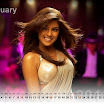 Bollywood Priyanka Chopra Wallpapers