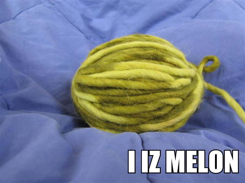 [melon.jpg]